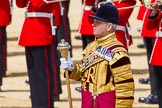 The Colonel's Review 2015. Horse Guards Parade, Westminster, London,  United Kingdom, on 06 June 2015 at 11:10, image #271