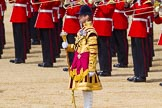 The Colonel's Review 2015. Horse Guards Parade, Westminster, London,  United Kingdom, on 06 June 2015 at 11:10, image #272