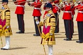 The Colonel's Review 2015. Horse Guards Parade, Westminster, London,  United Kingdom, on 06 June 2015 at 11:10, image #273