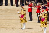 The Colonel's Review 2015. Horse Guards Parade, Westminster, London,  United Kingdom, on 06 June 2015 at 11:10, image #274