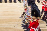 The Colonel's Review 2015. Horse Guards Parade, Westminster, London,  United Kingdom, on 06 June 2015 at 11:11, image #277