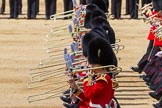 The Colonel's Review 2015. Horse Guards Parade, Westminster, London,  United Kingdom, on 06 June 2015 at 11:11, image #278