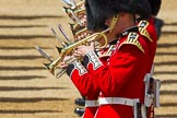 The Colonel's Review 2015. Horse Guards Parade, Westminster, London,  United Kingdom, on 06 June 2015 at 11:11, image #279
