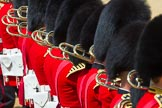 The Colonel's Review 2015. Horse Guards Parade, Westminster, London,  United Kingdom, on 06 June 2015 at 11:13, image #284