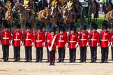 The Colonel's Review 2015. Horse Guards Parade, Westminster, London,  United Kingdom, on 06 June 2015 at 11:13, image #287