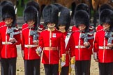 The Colonel's Review 2015. Horse Guards Parade, Westminster, London,  United Kingdom, on 06 June 2015 at 11:15, image #288