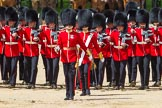 The Colonel's Review 2015. Horse Guards Parade, Westminster, London,  United Kingdom, on 06 June 2015 at 11:16, image #289