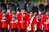 The Colonel's Review 2015. Horse Guards Parade, Westminster, London,  United Kingdom, on 06 June 2015 at 11:16, image #291