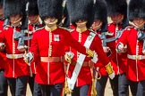 The Colonel's Review 2015. Horse Guards Parade, Westminster, London,  United Kingdom, on 06 June 2015 at 11:16, image #292