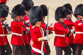 The Colonel's Review 2015. Horse Guards Parade, Westminster, London,  United Kingdom, on 06 June 2015 at 11:16, image #294