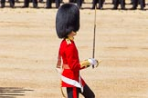 The Colonel's Review 2015. Horse Guards Parade, Westminster, London,  United Kingdom, on 06 June 2015 at 11:16, image #295