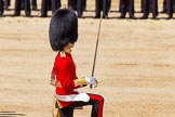 The Colonel's Review 2015. Horse Guards Parade, Westminster, London,  United Kingdom, on 06 June 2015 at 11:17, image #297