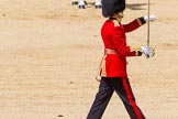 The Colonel's Review 2015. Horse Guards Parade, Westminster, London,  United Kingdom, on 06 June 2015 at 11:17, image #299