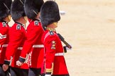 The Colonel's Review 2015. Horse Guards Parade, Westminster, London,  United Kingdom, on 06 June 2015 at 11:17, image #300