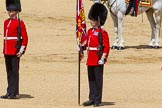 The Colonel's Review 2015. Horse Guards Parade, Westminster, London,  United Kingdom, on 06 June 2015 at 11:18, image #301