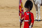 The Colonel's Review 2015. Horse Guards Parade, Westminster, London,  United Kingdom, on 06 June 2015 at 11:18, image #302