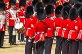 The Colonel's Review 2015. Horse Guards Parade, Westminster, London,  United Kingdom, on 06 June 2015 at 11:18, image #303