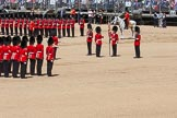 The Colonel's Review 2015. Horse Guards Parade, Westminster, London,  United Kingdom, on 06 June 2015 at 11:19, image #304