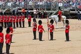 The Colonel's Review 2015. Horse Guards Parade, Westminster, London,  United Kingdom, on 06 June 2015 at 11:19, image #305