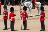 The Colonel's Review 2015. Horse Guards Parade, Westminster, London,  United Kingdom, on 06 June 2015 at 11:19, image #306