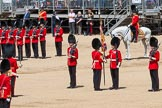 The Colonel's Review 2015. Horse Guards Parade, Westminster, London,  United Kingdom, on 06 June 2015 at 11:19, image #307