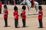 The Colonel's Review 2015. Horse Guards Parade, Westminster, London,  United Kingdom, on 06 June 2015 at 11:19, image #308