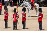 The Colonel's Review 2015. Horse Guards Parade, Westminster, London,  United Kingdom, on 06 June 2015 at 11:20, image #309