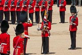 The Colonel's Review 2015. Horse Guards Parade, Westminster, London,  United Kingdom, on 06 June 2015 at 11:20, image #311