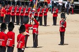 The Colonel's Review 2015. Horse Guards Parade, Westminster, London,  United Kingdom, on 06 June 2015 at 11:20, image #312