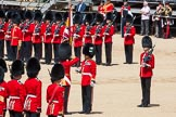 The Colonel's Review 2015. Horse Guards Parade, Westminster, London,  United Kingdom, on 06 June 2015 at 11:20, image #313