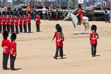 The Colonel's Review 2015. Horse Guards Parade, Westminster, London,  United Kingdom, on 06 June 2015 at 11:21, image #317