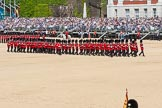 The Colonel's Review 2015. Horse Guards Parade, Westminster, London,  United Kingdom, on 06 June 2015 at 11:22, image #320