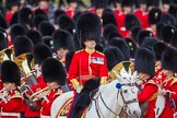 The Colonel's Review 2015. Horse Guards Parade, Westminster, London,  United Kingdom, on 06 June 2015 at 11:22, image #322