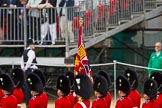 The Colonel's Review 2015. Horse Guards Parade, Westminster, London,  United Kingdom, on 06 June 2015 at 11:23, image #323