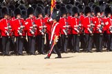 The Colonel's Review 2015. Horse Guards Parade, Westminster, London,  United Kingdom, on 06 June 2015 at 11:24, image #326