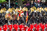 The Colonel's Review 2015. Horse Guards Parade, Westminster, London,  United Kingdom, on 06 June 2015 at 11:24, image #328
