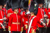 The Colonel's Review 2015. Horse Guards Parade, Westminster, London,  United Kingdom, on 06 June 2015 at 11:24, image #330