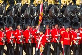 The Colonel's Review 2015. Horse Guards Parade, Westminster, London,  United Kingdom, on 06 June 2015 at 11:24, image #331