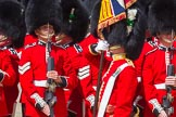 The Colonel's Review 2015. Horse Guards Parade, Westminster, London,  United Kingdom, on 06 June 2015 at 11:25, image #334