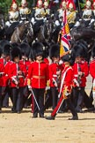 The Colonel's Review 2015. Horse Guards Parade, Westminster, London,  United Kingdom, on 06 June 2015 at 11:25, image #335