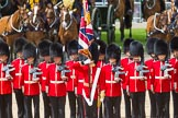 The Colonel's Review 2015. Horse Guards Parade, Westminster, London,  United Kingdom, on 06 June 2015 at 11:26, image #338