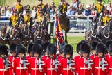 The Colonel's Review 2015. Horse Guards Parade, Westminster, London,  United Kingdom, on 06 June 2015 at 11:27, image #340