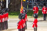 The Colonel's Review 2015. Horse Guards Parade, Westminster, London,  United Kingdom, on 06 June 2015 at 11:29, image #343