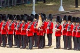 The Colonel's Review 2015. Horse Guards Parade, Westminster, London,  United Kingdom, on 06 June 2015 at 11:29, image #344