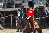 The Colonel's Review 2015. Horse Guards Parade, Westminster, London,  United Kingdom, on 06 June 2015 at 11:30, image #346