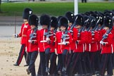 The Colonel's Review 2015. Horse Guards Parade, Westminster, London,  United Kingdom, on 06 June 2015 at 11:30, image #347