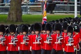The Colonel's Review 2015. Horse Guards Parade, Westminster, London,  United Kingdom, on 06 June 2015 at 11:30, image #349