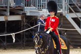 The Colonel's Review 2015. Horse Guards Parade, Westminster, London,  United Kingdom, on 06 June 2015 at 11:31, image #350