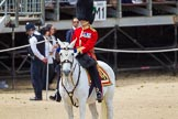 The Colonel's Review 2015. Horse Guards Parade, Westminster, London,  United Kingdom, on 06 June 2015 at 11:31, image #351