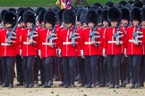 The Colonel's Review 2015. Horse Guards Parade, Westminster, London,  United Kingdom, on 06 June 2015 at 11:31, image #354